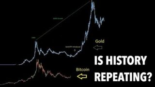 Comparing Bitcoin & Gold   Will history repeat itself?