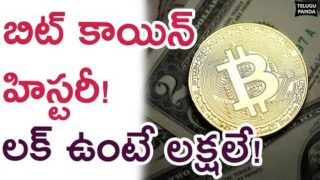 Facts Everyone Must Know About Bitcoin   History Of CryptoCurrency   Interesting News   Telugu Panda