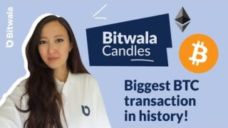 THE BIGGEST BITCOIN TRANSACTION IN HISTORY!   Candles. ep13