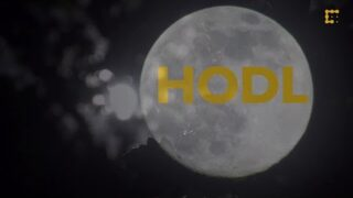 The History of HODL & Bitcoin's Best Worst Trader