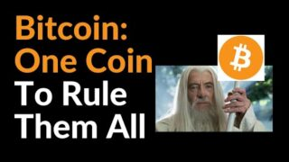 Bitcoin: One Coin To Rule Them All (Elon Musk)