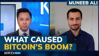Bitcoin's price explosion and NFT boom explained – Muneeb Ali