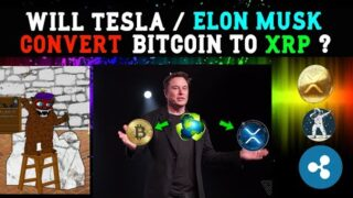 Elon Musk might Exchange Bitcoin for XRP