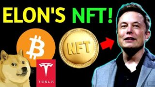 Elon Musk Sells NFT – Tesla Master Of Coin – BTC Best Performing Asset – Investview $1M in Crypto