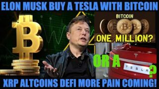 ELON MUSK TWEETS YOU CAN BUY A TESLA WITH BITCOIN! MORE PAIN TO COME TO BTC XRP ALTCOINS & DEFI!