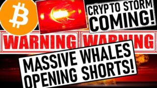 CRYPTO STORM COMING! WHALES OPEN MASSIVE BITCOIN SHORTS! ELON MUSK DUMPS THE MARKET AGAIN!