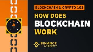How Does Blockchain Work|Explained for Beginners